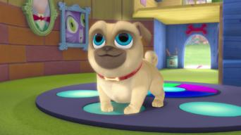 Is Puppy Dog Pals Season 1 2017 On Netflix South Africa